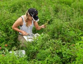 Research student visits UmPhafa Reserve