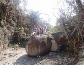 Recent intern talks of his experience at UmPhafa Reserve!